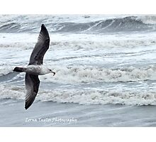 Flying with food Photographic Print