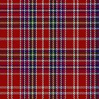 01205 Pettis Red Fashion Tartan Fabric Print Iphone Case by Detnecs2013