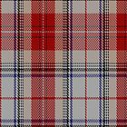 01206 Princesstarta Fashion Tartan Fabric Print Iphone Case by Detnecs2013