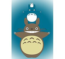 Totoro Totem with Detail Photographic Print