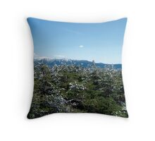 Last of the snow Throw Pillow