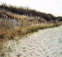 Sandy Point, Fence #2, April 2012 by jenjohnson1968