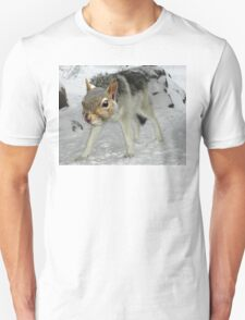 Timber Squirrel T-Shirt