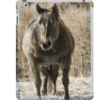 ipad horse cover iPad Case/Skin