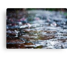 meet the rain Canvas Print