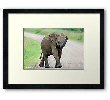 THE AFRICAN ELEPHANT – Loxodonta Africana - AFRIKA OLIFANT Framed Print