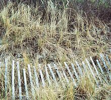 Sandy Point, Fence #3, April 2012 by jenjohnson1968