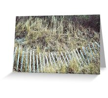 Sandy Point, Fence #3, April 2012 Greeting Card