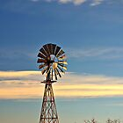 Desert Windmill by Sheryl Langston