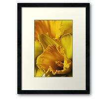 Pocketful of Sunshine Framed Print