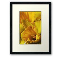 Pocketful of Sunshine Framed Print