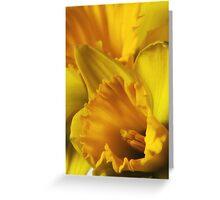 Pocketful of Sunshine Greeting Card