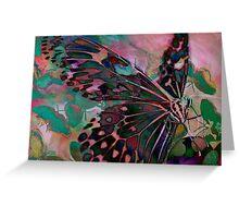 Digital: Butterflies Greeting Card