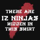 12 Hidden Ninjas (Black) by cadellin