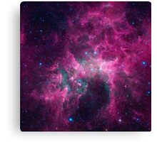 Galaxy universe Canvas Print