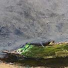 stormy moor by H J Field
