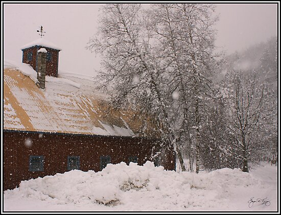 Barn and Birch in Snowstorm by Wayne King