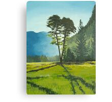 Canadian sun Canvas Print