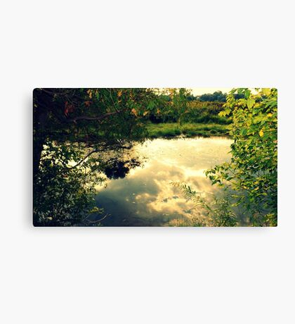 Below Us Only Sky Canvas Print