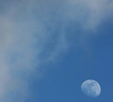 Afternoon Moon by marybedy