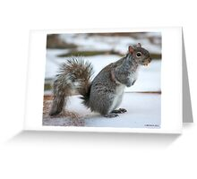 Corn Niblet Treat Greeting Card