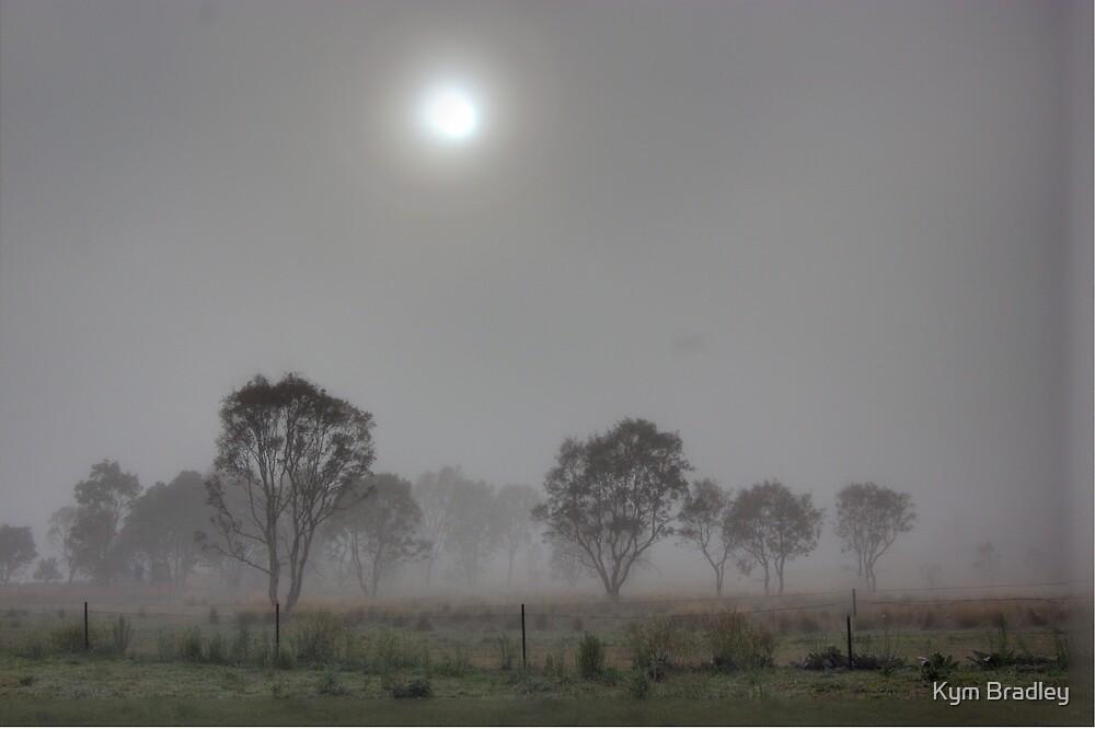 Breaking Through,  Rural NSW  by Kym Bradley