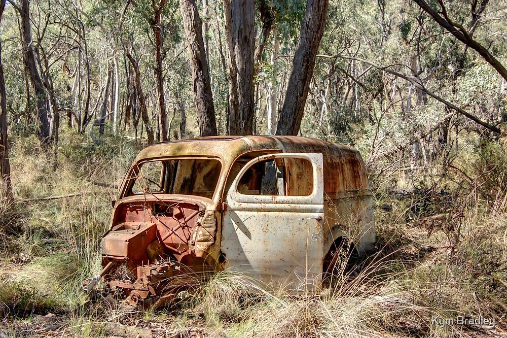 Here I stay  Old Van Rural NSW by Kym Bradley