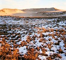 Plum Island, Dune, January 2013 by jenjohnson1968