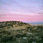 Plum Island, Sunset #2, January 2013 by jenjohnson1968