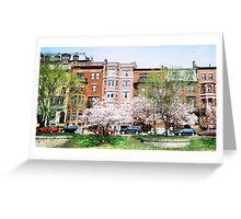 Back Bay, Boston, April 2011 Greeting Card