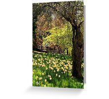 A Spring Stroll Greeting Card