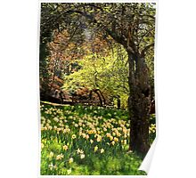 A Spring Stroll Poster