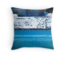 Eastern Shoreboard Throw Pillow