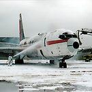 Airplane Crash Drill at SFO Airport by jimfitz