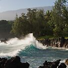 Shoreline at Keanae, off the Road to Hana by Mark Prior