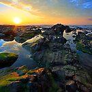 Wallabi Point by Matthew Jones