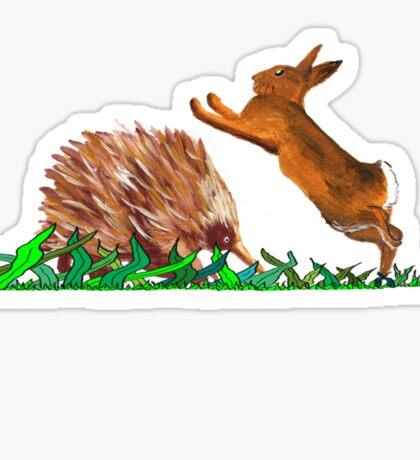 Echidna - Rabbit Play Sticker