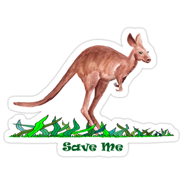 Save the Kangaroo by David Fraser
