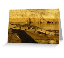 Shadowy Threat, Geikie Gorge Greeting Card