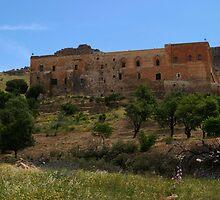 Deyrulzafaran Monastery in Mardin by Jens Helmstedt