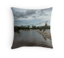 Lennard River Throw Pillow
