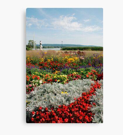 Flower Display, Keszthely Canvas Print