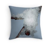 The Icy Overcoat Throw Pillow