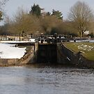 Snowy Locks at Tyrely by DavidFarm