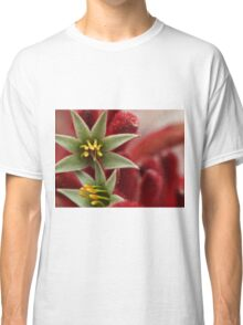 Red Paws Classic T-Shirt