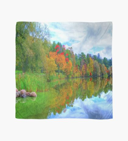 Excellence in Light & Reflection  Scarf