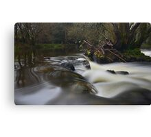 Dartmoor: The River Teign Canvas Print