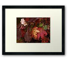 Autumn Echoes Framed Print
