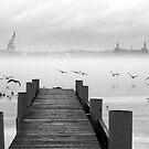 Misty River by SarahmRobbins