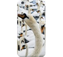 Mostly Swans iPhone Case/Skin